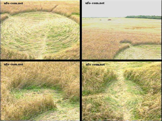 Круги на полях Беларуси