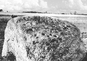 """Камень-чашечник у д. Дайнова-1 - иллюстрация из статьи """"Культовые валуны с рукотворными углублениями"""" [1]."""