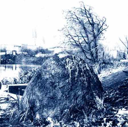 Фотография камня - начало XX века, из статьи В. Кобрута [7].